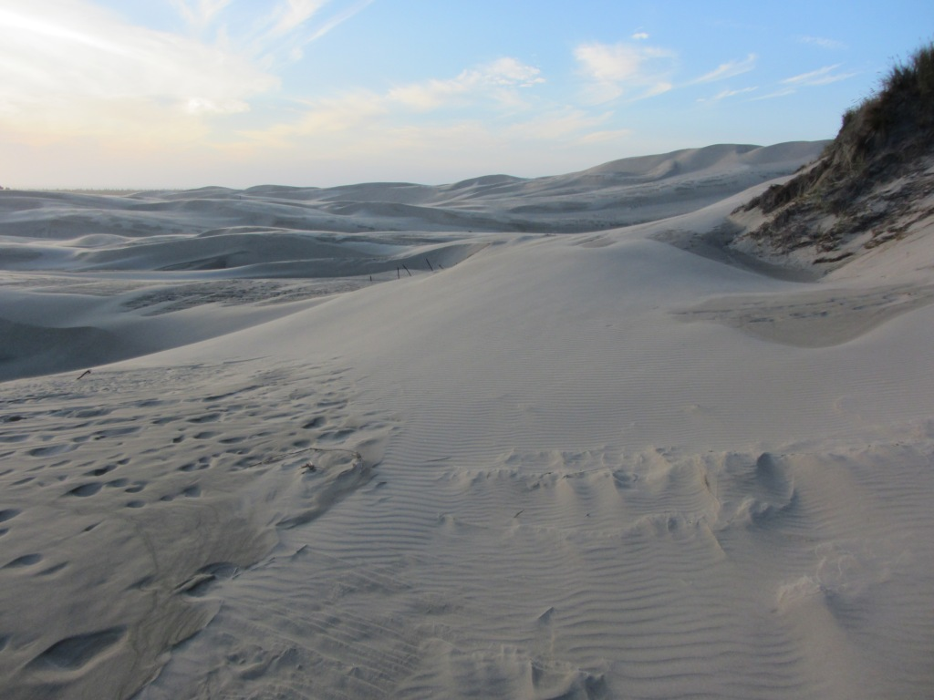 Florence OR Sand Dunes 2