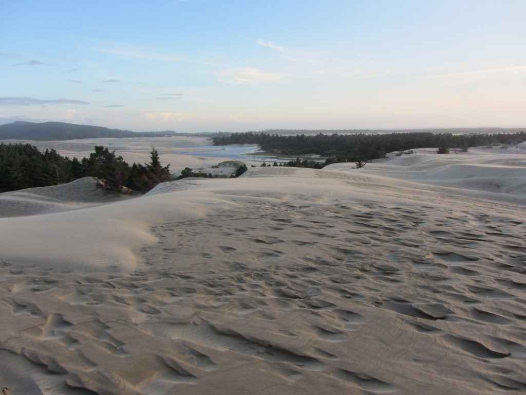 Florence OR Sand Dunes 4