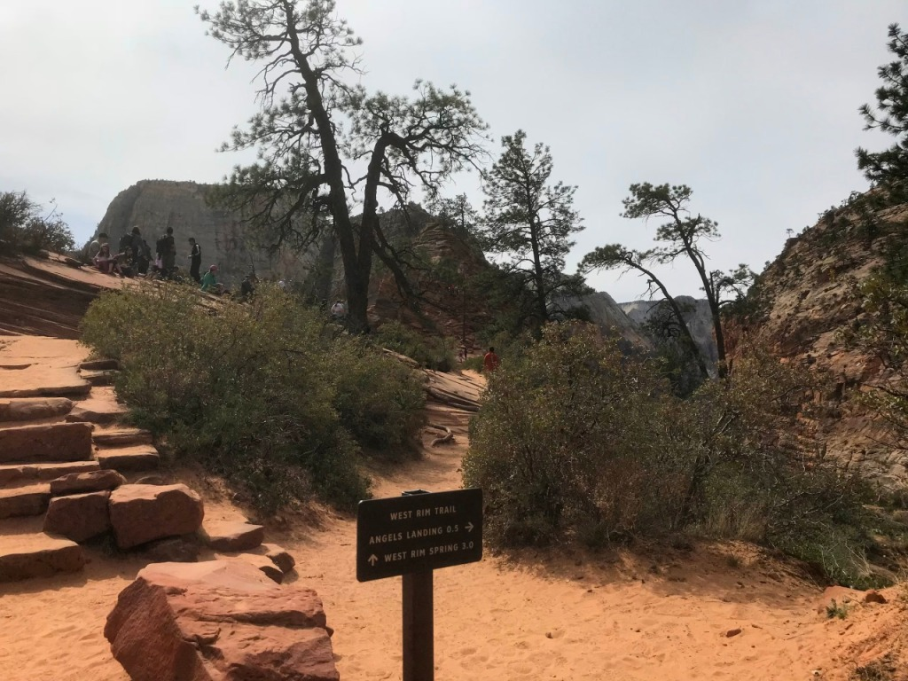ZionNP_AngelsLanding_Scouts